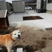 ペットの遊び場と菜園も確保 NO.466の施工写真メイン