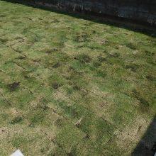 物置とウッドデッキでお庭をグレードアップ NO.652の施工写真1