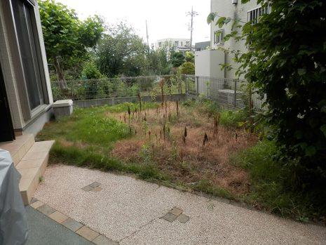 雑草対策ですっきり NO.701の施工前写真2