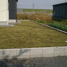 敷地が大きい時の雑草対策 NO.749の施工写真1