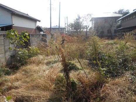 植栽を伐採伐根 NO.781の施工前写真1