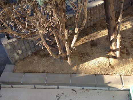 スプレーコンクリートで明るく NO.797の施工後写真1