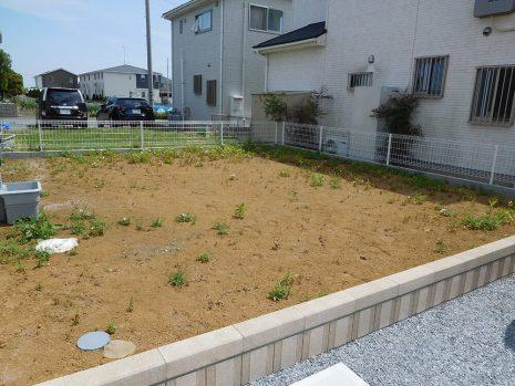 芝と砂利で雑草対策 NO.885の施工前写真1